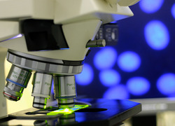 Microscope in lab med res iStock.jpg
